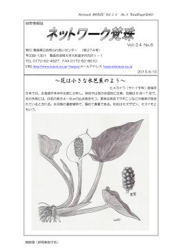 ネットワーク 6月号pdf