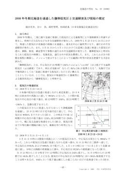 2008 年冬期北海道を通過した爆弾低気圧と交通障害及び視程の推定