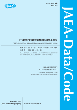 JAEA-Data-Code-2008-019:1.17MB