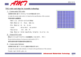 Hitachi ULSI Systems Co .,Ltd.