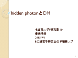 hidden photonとDM