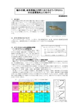 PDF:498KB