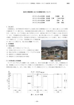 胆沢川横断橋における現場計測について