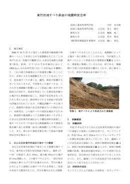 東竹沢地すべり斜面の地震時安全率
