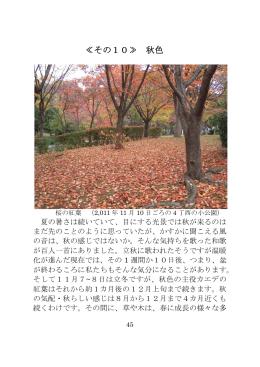 ≪その10≫ 秋色 - ソワール新檜尾台