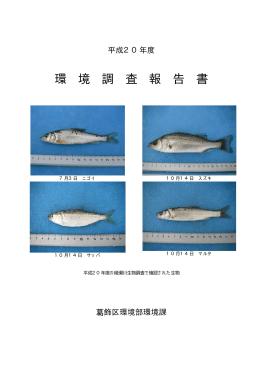 平成20年度環境調査報告書(全文)(PDFファイル 3.0MB)