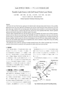予稿集 p.108-111