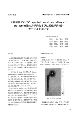 ous a!:ograft and cement法の力学的ならびに組織学的検討