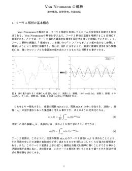Von Neumann の解析
