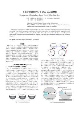 予稿 ヨコウ (PDF: 0.6MB)