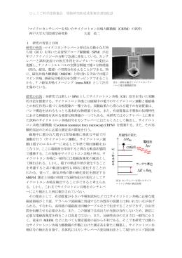 ひょうご科学技術協会 奨励研究助成成果報告書(2012) 「マイクロ