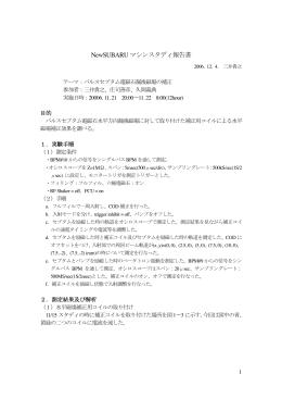 NSSR-06-09