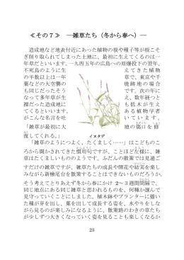 ≪その7≫ ―雑草たち(冬から春へ)― - ソワール新檜尾台