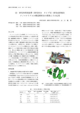 ⑵ 研究科特別経費(研究科分 タイプⅡ)研究成果報告 ナノ