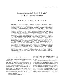 Prevotella intermedia の GroEL と DnaK が バイオ