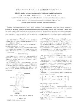 発表原稿 2002年6月pdf