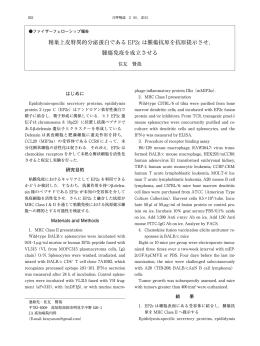 全文PDF 849KB