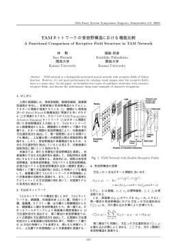 TAMネットワークの受容野構造における機能比較