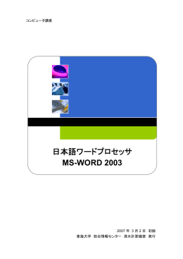 MS-WORD 2003
