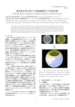 重合格子法を用いた球面座標系での流体計算