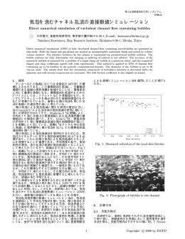 気泡を含むチャネル乱流の直接数値シミュレーション