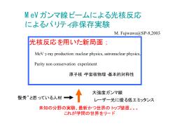 MeVガンマ線ビームによる光核反応によるパリティ非保存実験 - SPring-8