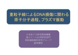 重粒子線によるDNA損傷に関わる 原子分子過程、プラズマ振動