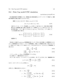 D.6 Polar Cap modelのPIC simulation