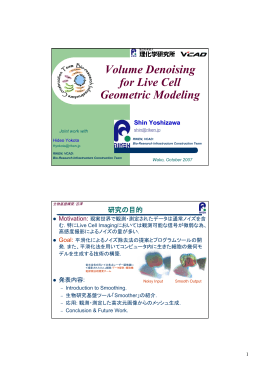 Volume Denoising for Live Cell Geometric Modeling