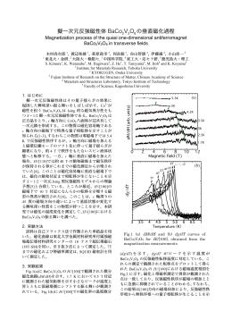 擬一次元反強磁性体 BaCo V O の垂直磁化過程