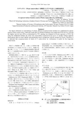 (Phaius tankervilleae) 完熟種子のガラス化法による超低温保存