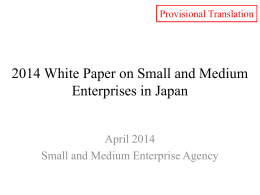 2014 White Paper on Small and Medium Enterprises in