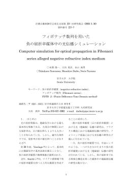 フィボナッチ数列を用いた 負の屈折率媒体中の光伝播