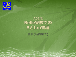 A02 総括 「Belle実験でのBとタウ物理」
