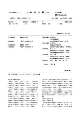 JPO Patent SGML to PDF Conversion