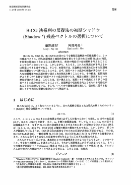 BiCG法系列の反復法の初期シャドウ
