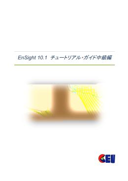 EnSight 10.1 チュートリアル・ガイド中級編