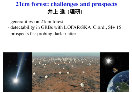 21cm forest: challenges and prospects