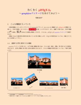 """わくわくpLATEX 2"""""""
