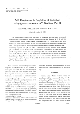 Acid Phosphatases in Cotyledons of Buckwheat