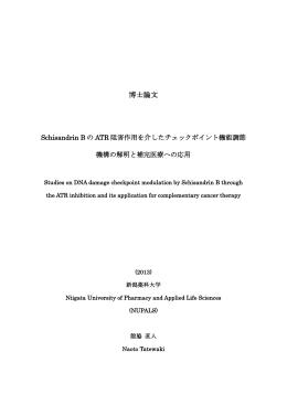 3 博士学位論文 (2013) Tatewaki