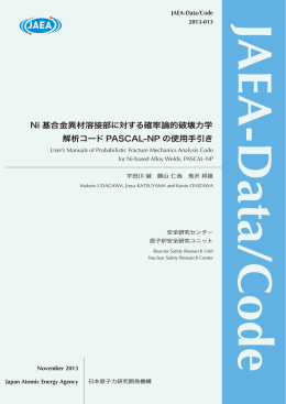 JAEA-Data-Code-2013-013:4.55MB