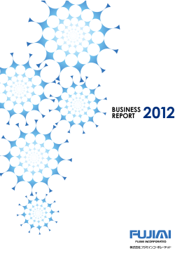 BUSINESS REPORT 2012