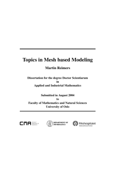 Topics in Mesh based Modeling