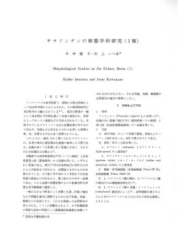 1報〉 - 広島県大学共同リポジトリ