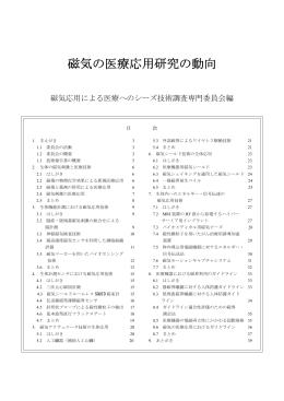 技術報告書 案 (平成24年6月19日作成版)