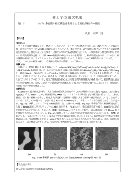 Co/Pt 多層膜の磁区構造を利用した常磁性微粒子の捕捉