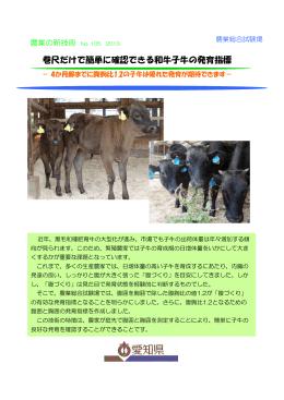 巻尺だけで簡単に確認できる和牛子牛の発育指標