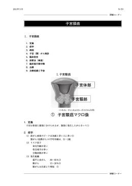 子宮頸癌( PDF 3240kB)