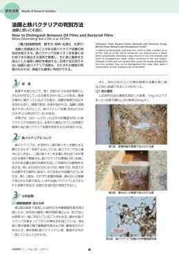 油膜と鉄バクテリアの判別方法